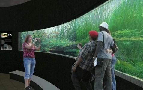 Ogromne Akwarium Będzie Gotowe Na Jesień Najnowocześniejsze W