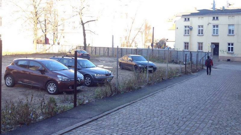dziki-parking-synagoga